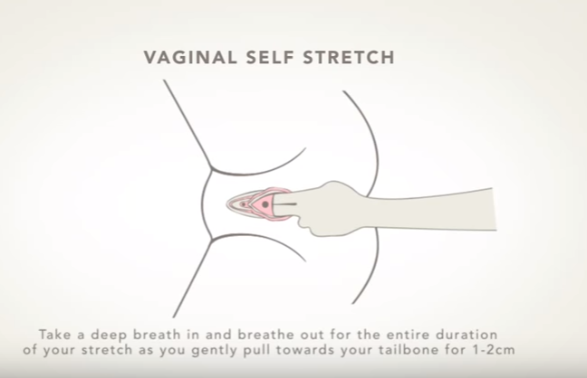 Vaginal Self Stretch Youtube